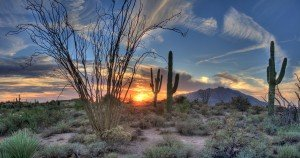 what to do in Arizona