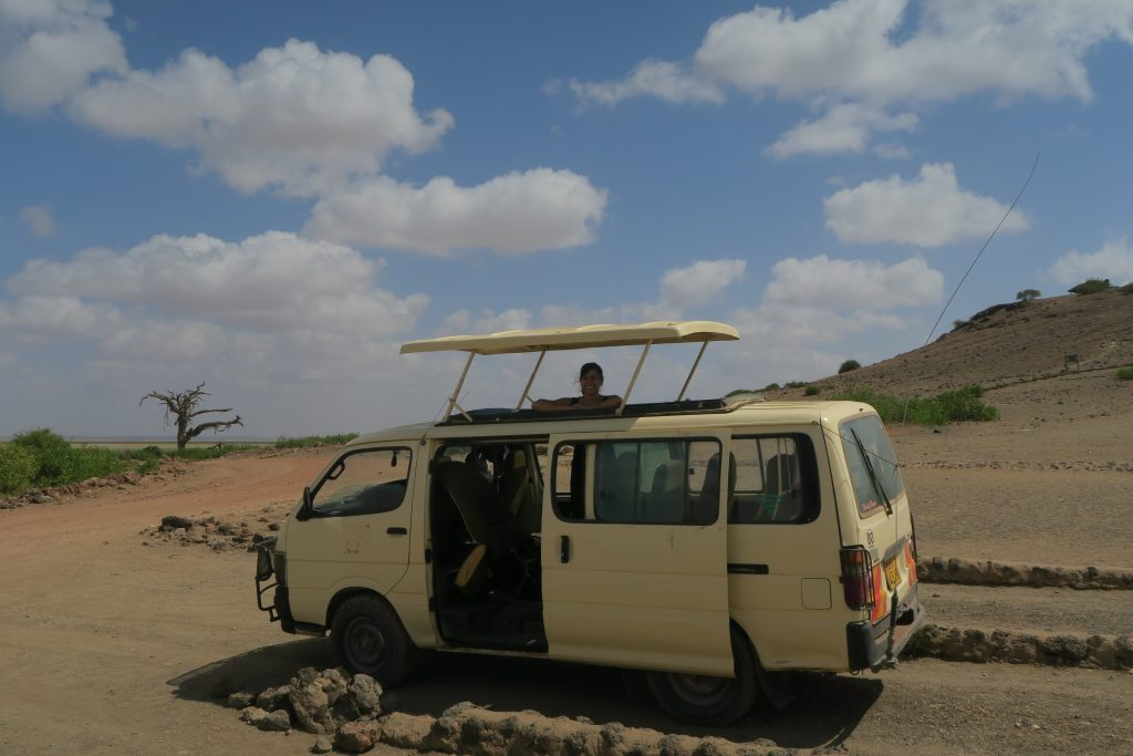 african safari on a budget