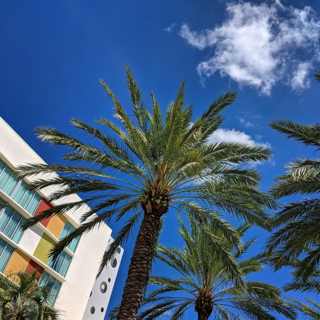 Cabana Bay review