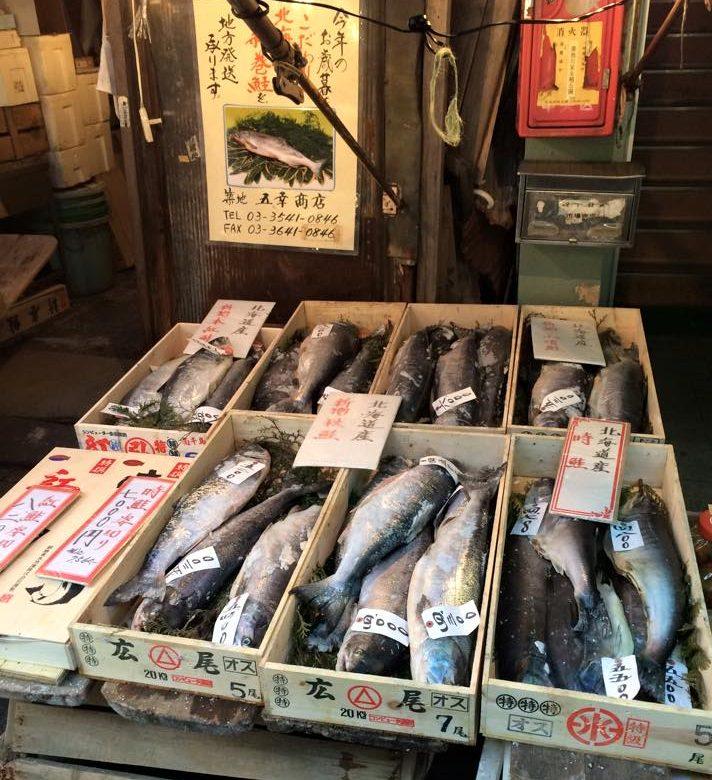 new Tsukiji Fish Market tokyo new Tsukiji Fish Market tokyo kyoto osaka itinerary