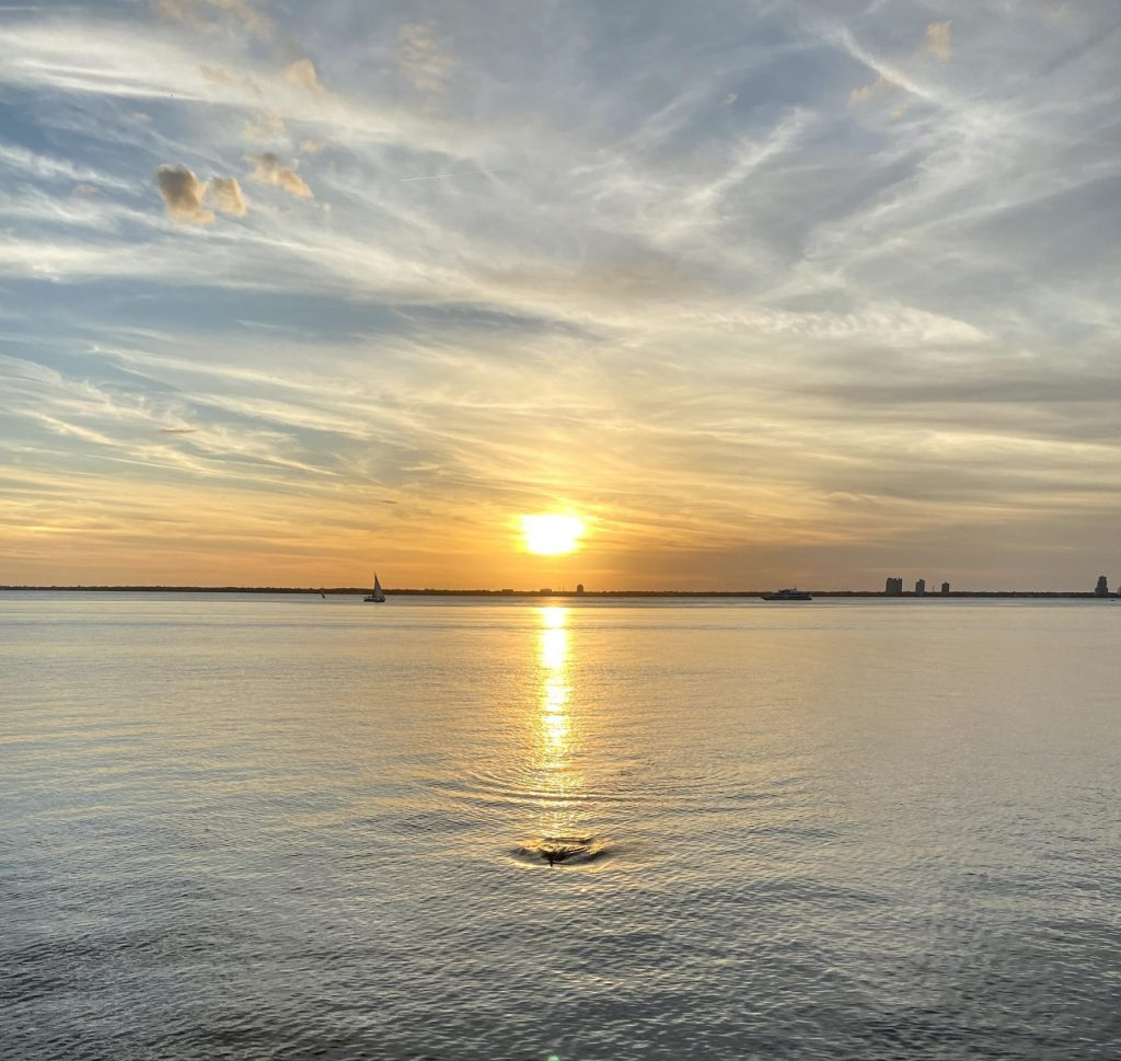 sunset tampa bay