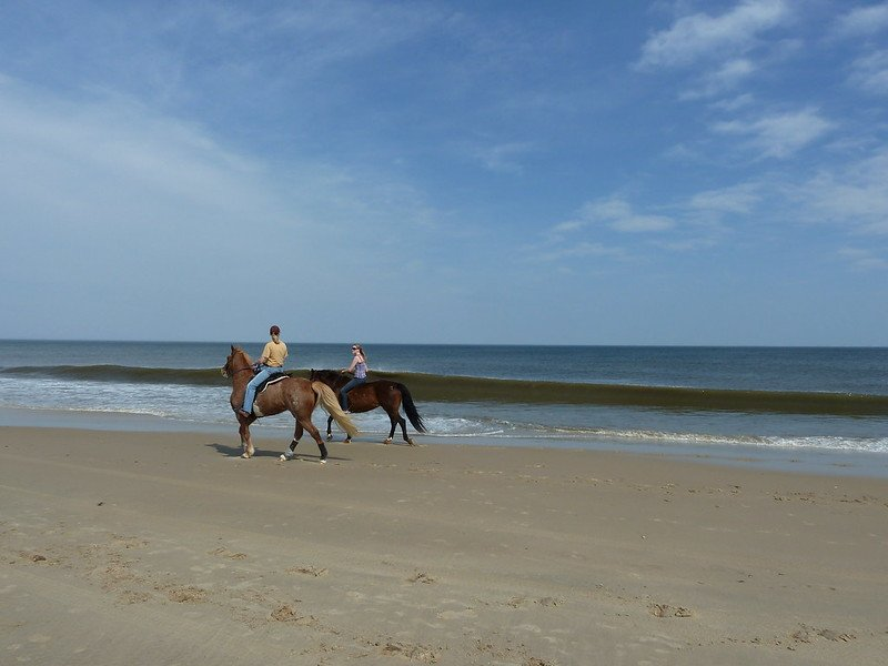 horseriding beach essex