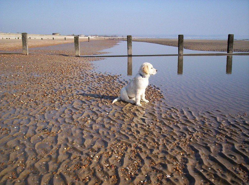 uncrowded beaches in kent