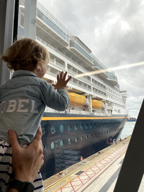 cruise with toddler cabin